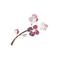 Blossom cherry flowers hand drawn sketch on vector illustration