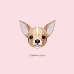 Chihuahua dog portrait vector illustration in geometric style