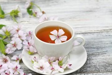 Marsh mallow tea,  Althaea officinalis