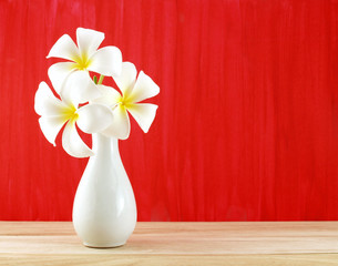 white plumeria flowers in white vase on wooden floor and red painted wall, tropical flowers bloom summer for home decoration