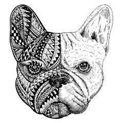 Hand drawn French Bulldog head zentangle stylized