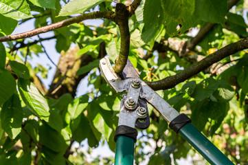 GmbH kaufen gmbh kaufen Landschaftsbau gmbh gesellschaft kaufen arbeitnehmerüberlassung gmbh kaufen ohne stammkapital
