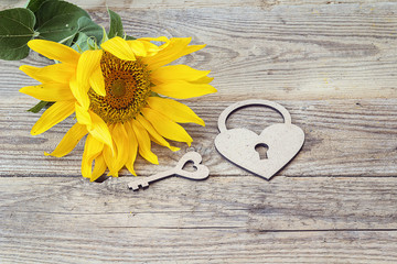 Background with sunflower, lock-heart and key on a old wooden bo