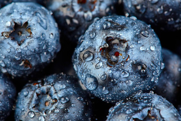 Blueberry with drops of water