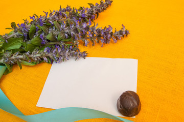 purple flowers and candy on background. Blank, greeting card. Na