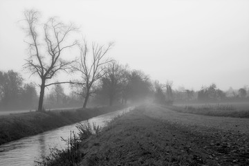Winter foggy landscape with a pathway, a little stream and bare trees under the fog