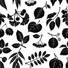 Seamless Nature Background with Pictogram Tree Leaves, Willow, Hawthorn, Poplar, Aspen, Ginkgo Biloba, Elm, Alder, Linden, Rowan, Chestnut, Black Chokeberry and Beech. Black on White. Vector