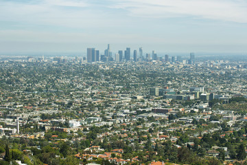 Wall Mural - Downtown Los Angeles skyline
