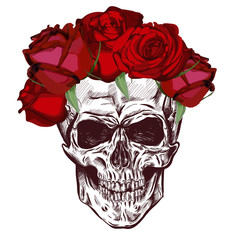 Skull And roses. Sketch With gradation Effect. Vector