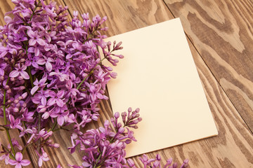 purple lilac branch on wooden background. Blank, greeting card.