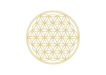 Blume des Lebens - Gold