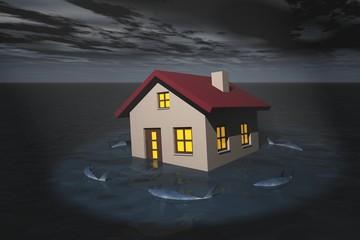 Haus in Seenot - Finanzhaie