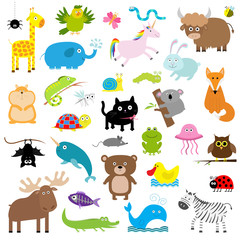 Zoo animal set. Cute cartoon character collection. Isolated. White background. Baby children education. Alligator, bear, cat, duck, elephant frog giraffe hamster iguana fox koala owl bat Flat design