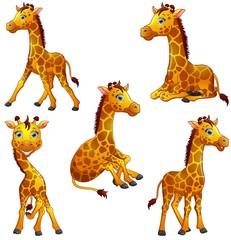 Giraffe cartoon set collection