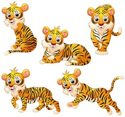 Tiger cartoon set collection
