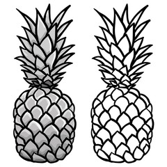 Pineapple in grey and outline illustration vector
