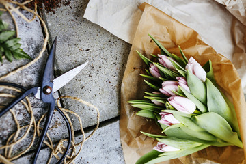 Directly above shot of tulip bouquet with scissors on concrete floor
