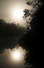 Sunrise on the sekonyer river, Borneo, Indonesia
