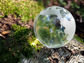 The ball in the woods on a stump with moss. Glass - a material, concepts and themes, concepts, environment, nature