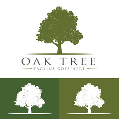 Oak Tree Logo Design Template v.9