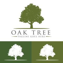 Oak Tree Logo Design Template v.9