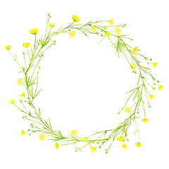 Floral wreath.Garland with buttercup flowers.Herbal circle frame.Watercolor hand drawn illustration.