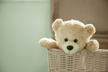 toy teddy bear in basket