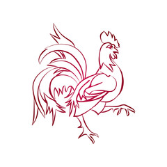 Red rooster is animal symbol of new year 2017