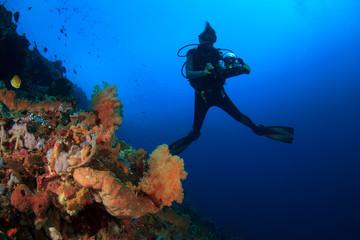 Scuba dive coral reef underwater in ocean