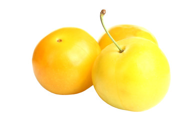 yellow plum  on a white isolated  background