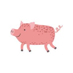 Pink Piglet Walking