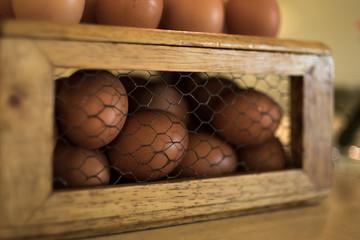 Egg, Hen Egg.