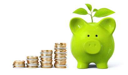 Green piggy bank with plant and coin stacks in ascending order