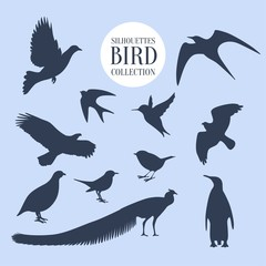 Silhouettes bird collection