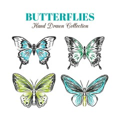 Hand drawn butterflies in green and blue color