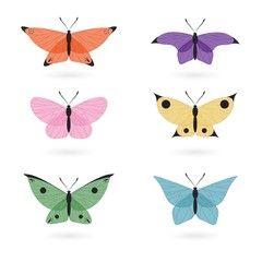 Hand drawn delicated butterflies in colors