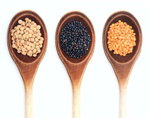 Various kinds of lentils in spoons on white background