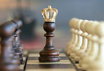 Пешка стала королём.