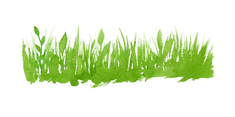 Vector green watercolor natural, organic, bio, eco label and shape, grass on white background. Hand drawn stain.