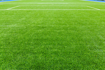 beautiful football field, soccer field,