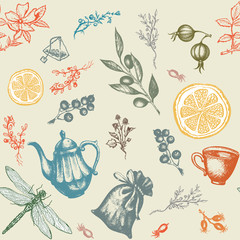 Herbal tea seamless pattern