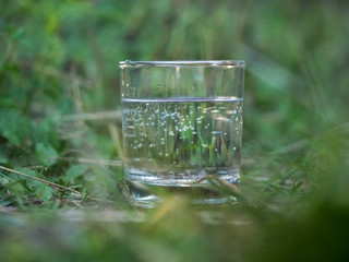 Water in a glass among the thick green grass. The air bubbles