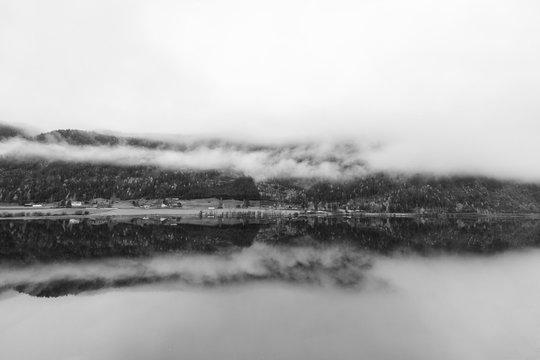 Landscape Forest Norway Symmetry
