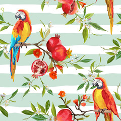 Ingelijste posters Papegaai Tropical Flowers, Pomegranates and Parrot Birds Background