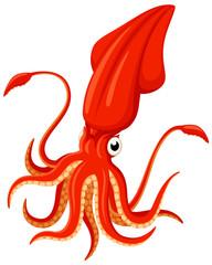 Vector illustration of a bright orange cartoon squid.