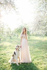 Young beautiful bride in wedding dress with greyhound outdoors
