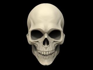 Skull on black background - 3D Illustration