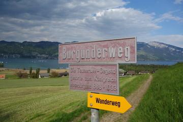 Burgunderweg am Thunersee