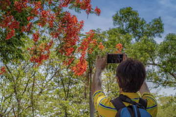 A man are standing shooting Colorful flowers In a park with a mo