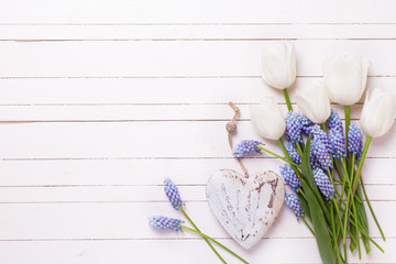 Background with blue muscaries flowers, white tulips and decorat